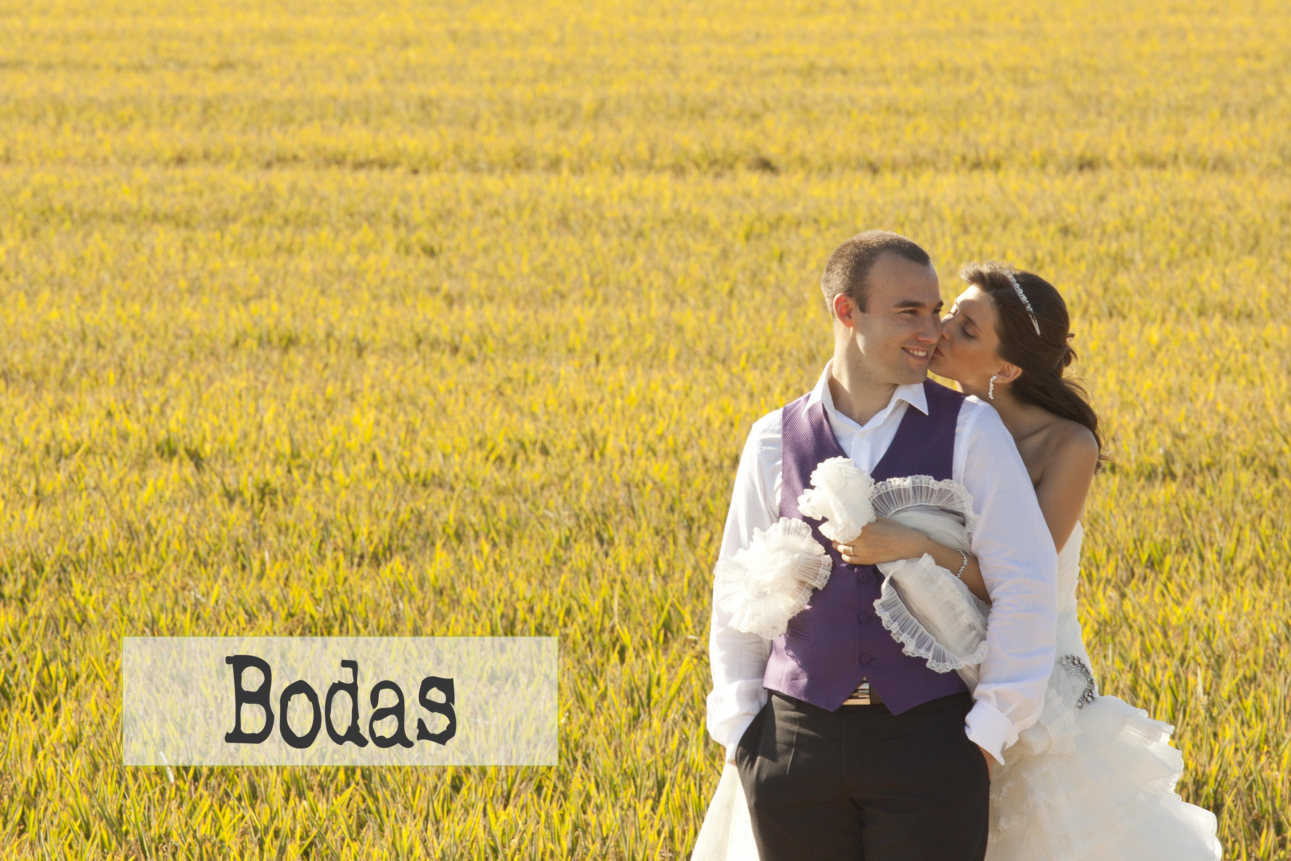 bdsfotografos-bodas